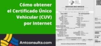 Cómo emitir el certificado único vehicular por Internet