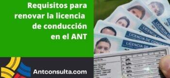 Cómo renovar la licencia de conducción en Ecuador